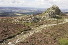 stiperstones-national-nature-reserve-1-230-230