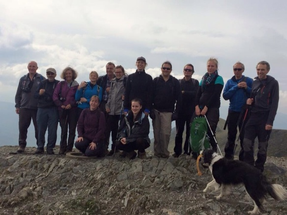 Halls Fell Ridge Group